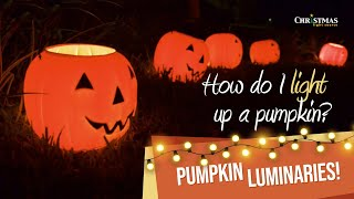 How do I light up a pumpkin?  Pumpkin Luminaries!