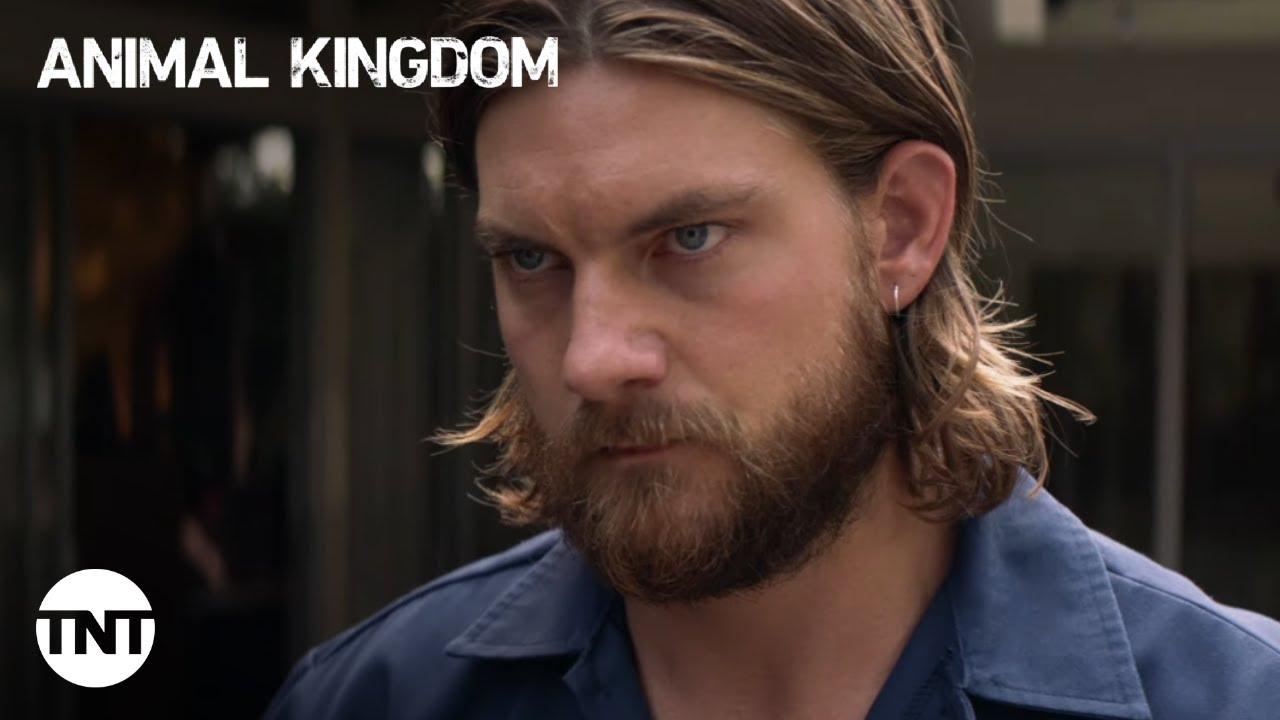 Download Animal Kingdom: A Cody house fight - Season 5, Episode 8 [CLIP] | TNT
