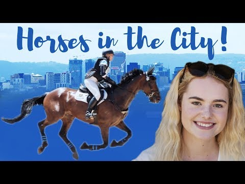HORSES In The CITY! 5* Eventing! Australian 3 Day Event | This Esme