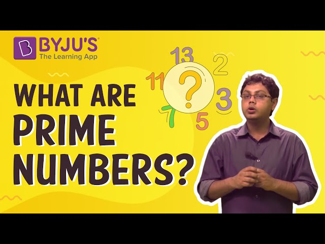 Prime Numbers - Introduction With Examples
