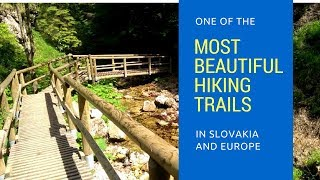 One of Most Beautiful Hiking Trails   Slovakia   Europe (2018)