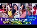 Sri Lankan Girls with Pets | Pet Lovers | New TikTok
