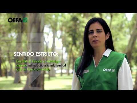 ¿Cómo se realiza la fiscalización ambiental en el Perú?