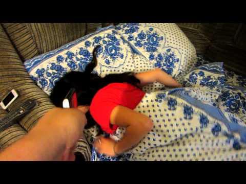 Как сунуть в рот спящей видео СЕРВЕР