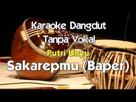 Karaoke Putri Unyu - Sakarepmu (Baper)