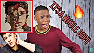 SHAWN MENDES - THE ALBUM REACTION / REVIEW