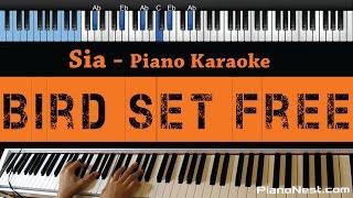 Sia - Bird Set Free - LOWER Key (Piano Karaoke / Sing Along) Mp3