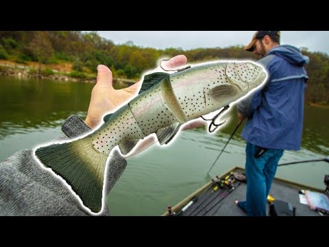 I Can't Believe We CALLED This Big Fish Catch (LUCKY) || 50 State Fishing Tour (Salt Fork, OH)