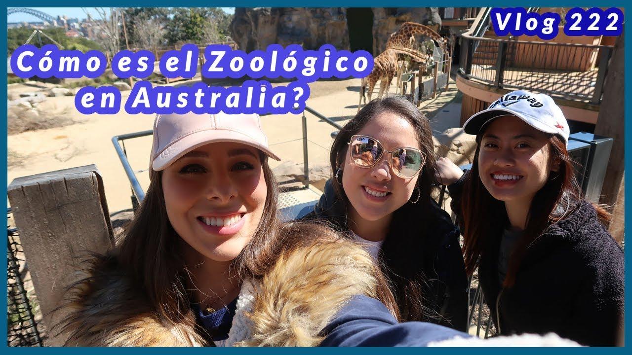 Cómo son los Zoológicos en Australia? - Vlog 222