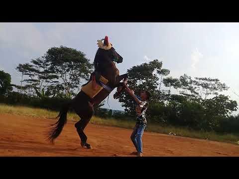 melatih kuda renggong/silat janaka_group