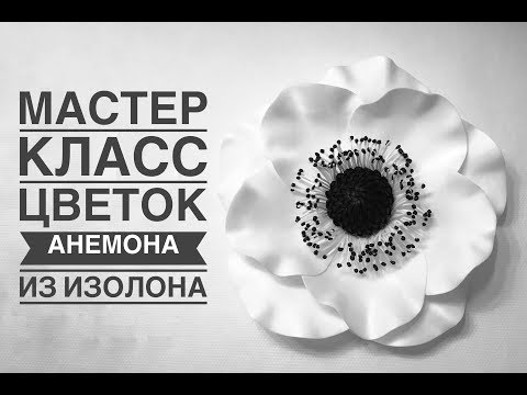 Большой цветок Анемона / DIY How To Make A Big Flower Anemone /Anêmona Flor Grande DIY