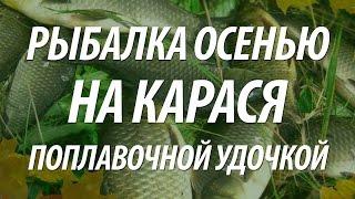 Рыбалка на карася осенью на поплавочную удочку(Рыбалка на карася в видео проходила на поплавочную удочку осенью. Узнайте, как поймать карася, как варить..., 2015-07-09T11:34:52.000Z)