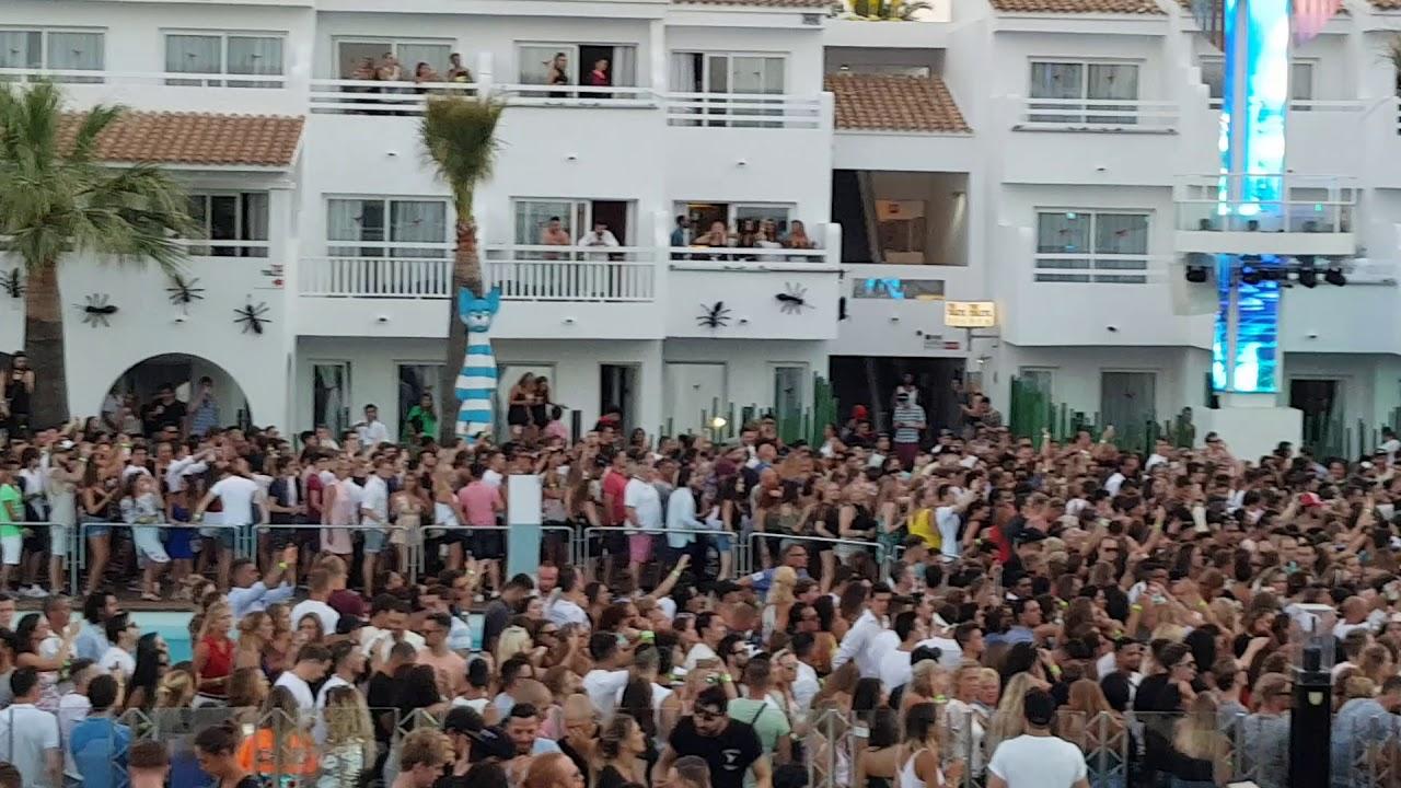 Download Zedd Ushuaia Ibiza 2017