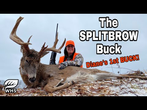 How To Deer Hunt Late Season Big Bucks
