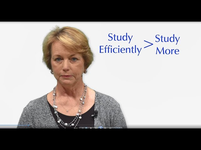 Study Strategies for Students with Learning Differences