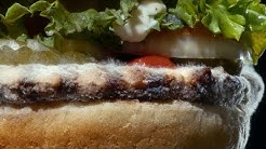 Burger King features moldy Whopper in new ad