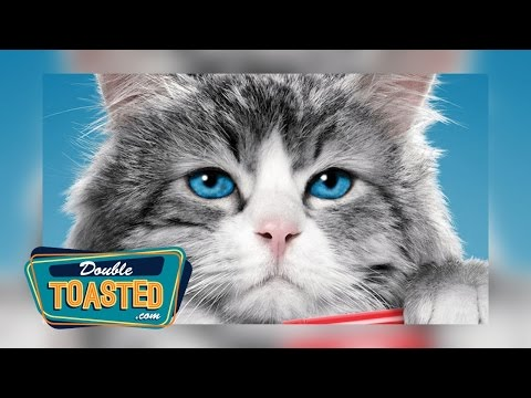 NINE LIVES MOVIE REVIEW - Double Toasted Highlight