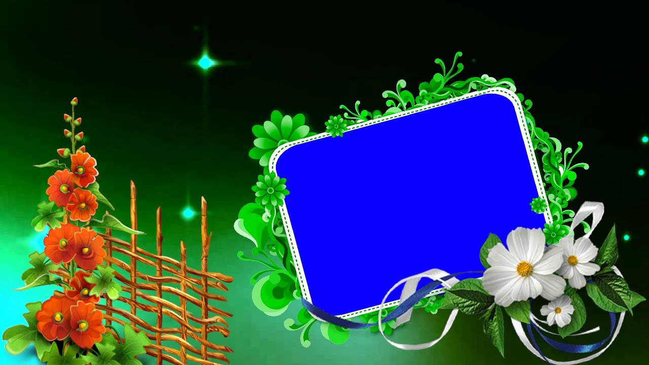 Background Photo Studio Hd: Wedding Motion Full HD Blue Background Video Free