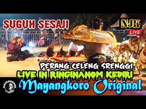 🔴 Suguh Sesaji Mayangkoro Original Live Ringinanom Kota KEDIRI 23 Juni 2019