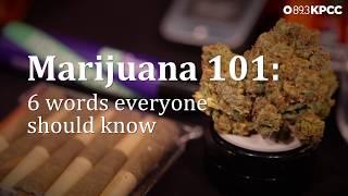 Marijuana 101: 6 woŗds you need to know