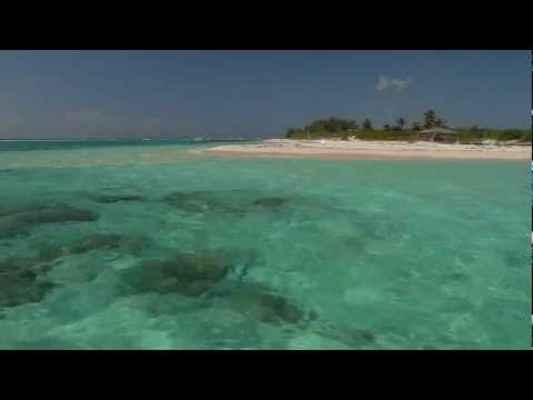 SOLD! | Point of Sand, Little Cayman, Cayman Islands Sotheby's International Realty