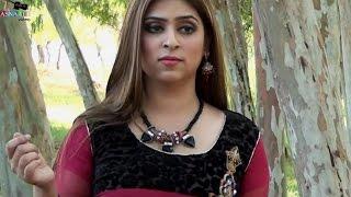 Dukhian Da Ehsas  Haroon Niazi  New Album 2016  Punjabi Saraiki Song (Full HD)