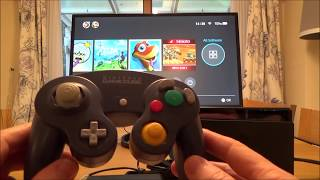 GameCube Controller on Nintendo Switch (21)