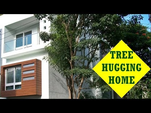 Tree Hugging Home in HSR Layout Gated Community
