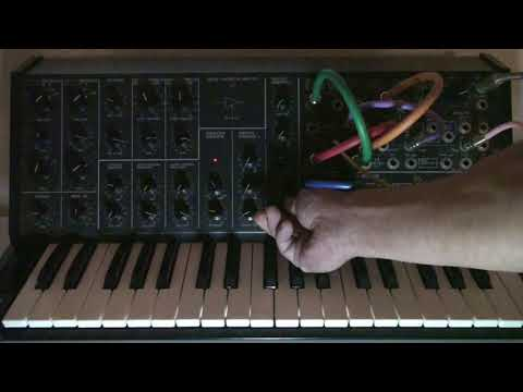 Korg MS-20 glittering loop with ring modulation and filter resonance