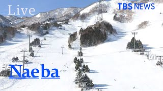【LIVE】苗場スキー場  ライブカメラ / Naeba N…