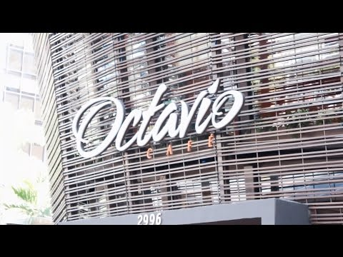 Video - Octavio Café - Antena 1