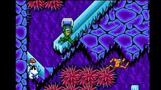 "TAS HD: NES Battletoads (USA) ""2p warps"" in 11:04.72 by feos & MESHUGGAH"