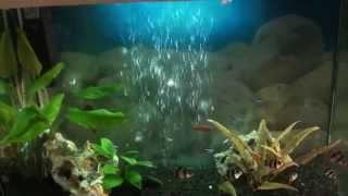 Крышка для аквариума своими руками видео(Крышка для аквариума своими руками. В этом видео показана краткая инструкция как из куска пластика и жидких..., 2015-11-15T20:02:06.000Z)