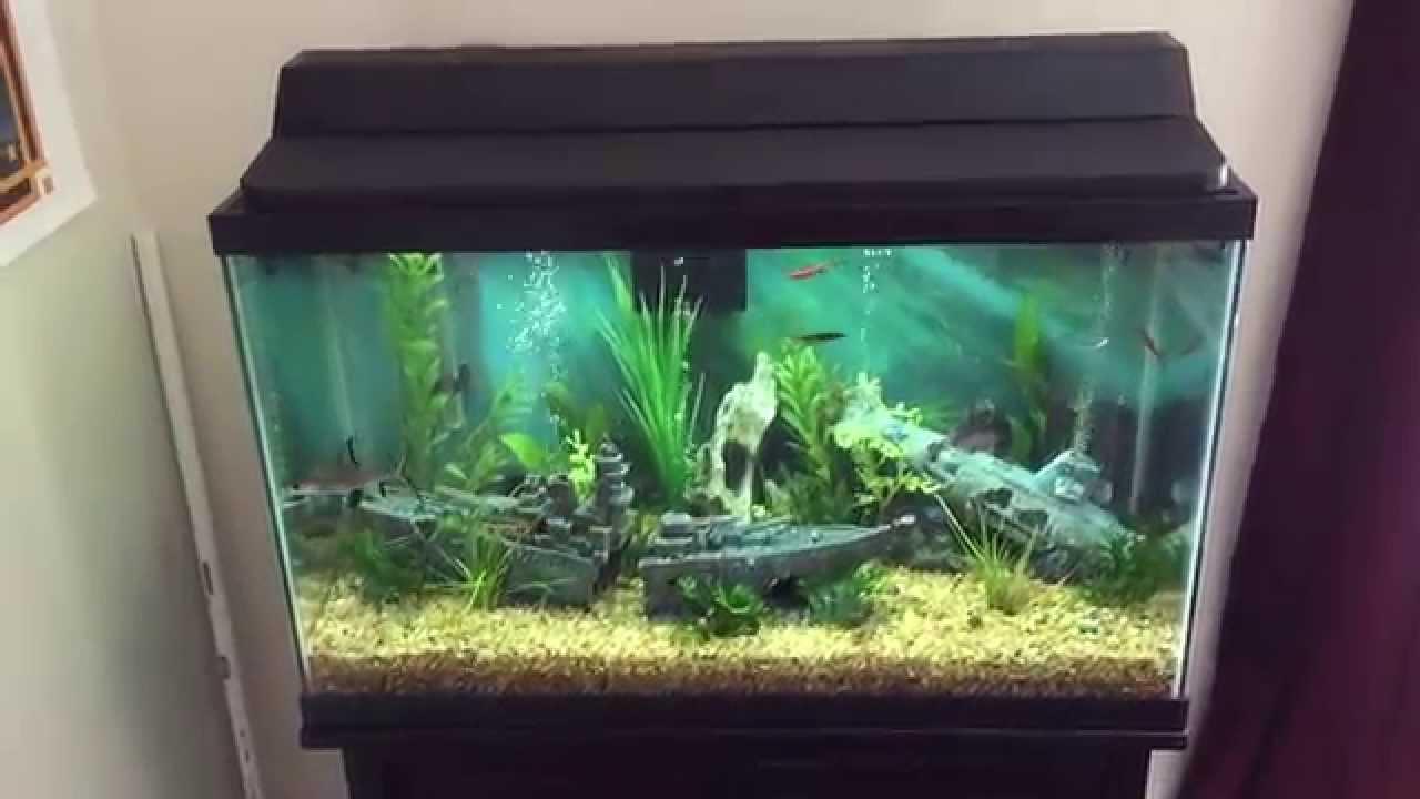30 gallon aquarium setup with sump youtube for 30 gallon fish tank