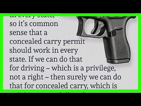 Gun license is not an infringement of rights