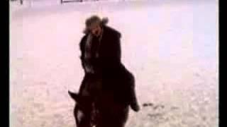 Александр Розенбаум - Жеребенок