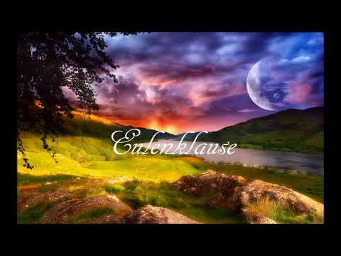 Goa Progressive Trance & Psy Trance Set by Eulenklause (Happy New Year)
