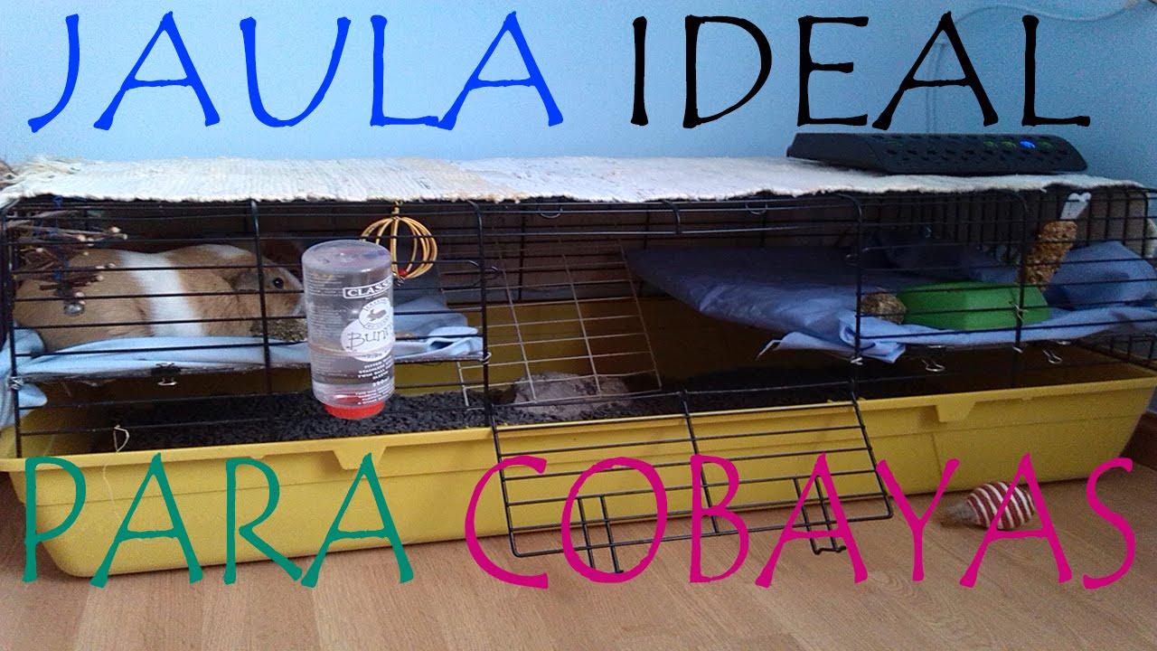 La jaula ideal para cobayas 2 pisos en la misma jaula y - Casas para belenes hechas a mano ...