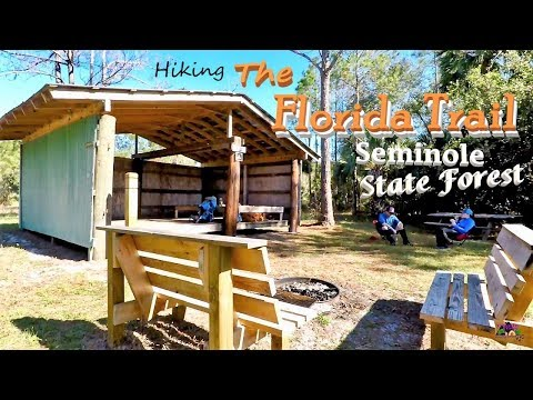 The Florida Trail - Seminole State Forest section