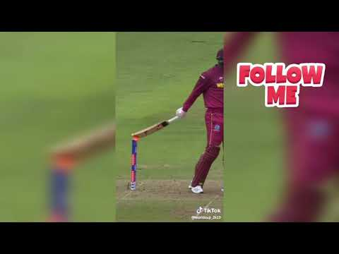 WhatsApp status-Cricket Fan-India wins