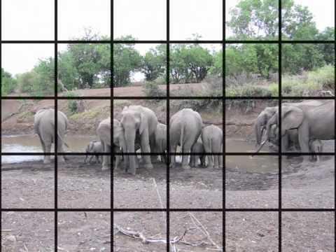 Botswana - Mashatu, Land of Giants