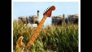 Walter Trout - Open Book