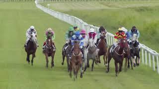 Vidéo de la course PMU PRIX DU REVEILLON