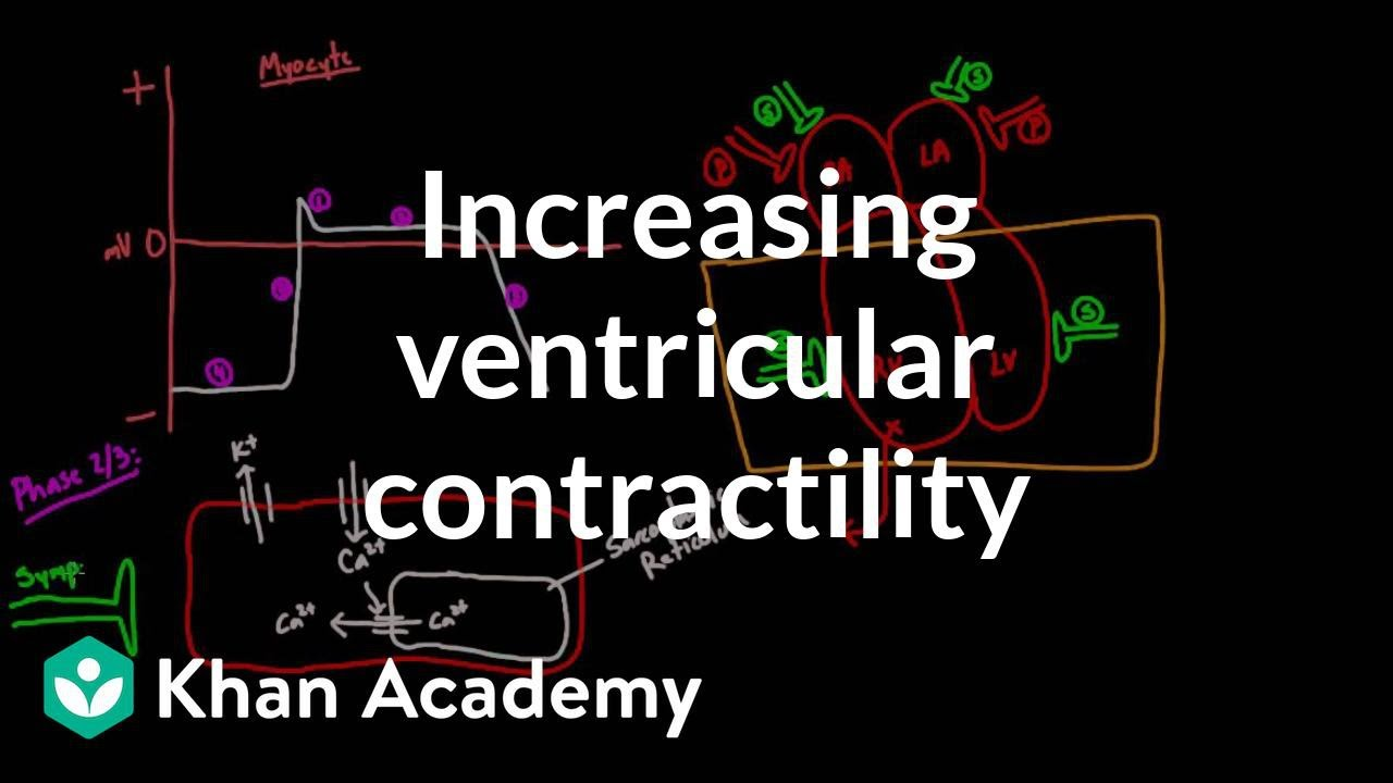 Increasing ventricular contractility - inotropic effect