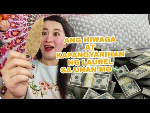 Ang Hiwaga At Kapangyarihan Ng Dahon Ng Laurel Sa Unan Mo-Apple Paguio1