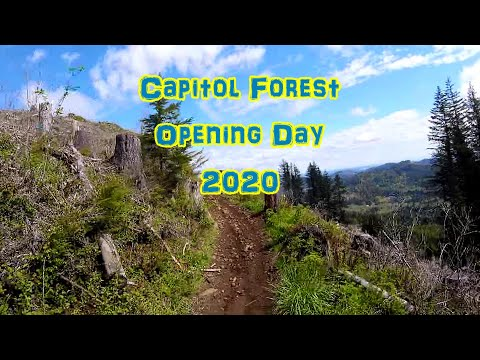 Capitol Forest Long Loop