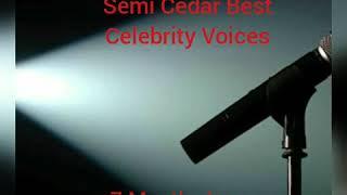 Semi Cedar Best Celebrity Voices 7 Months Inn