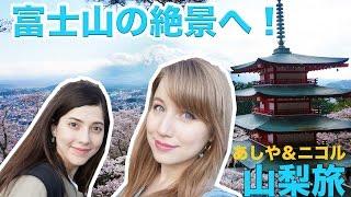 【あしや&ニコル】富士山の絶景を見に山梨へ!新倉山浅間公園: 富士山、桜、五重塔🗻🌸