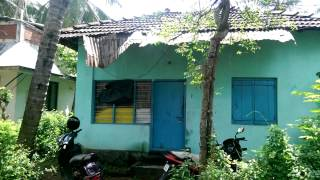 3 Cent plot & 800 SQF 2 BHK Old( Tiled Rooffing)House near kachery,Nellikkunnu - Thrissur, Kerala