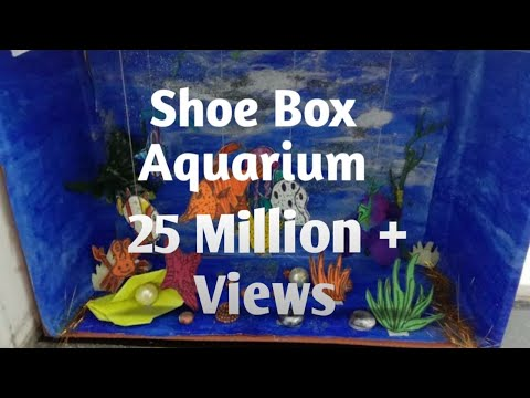 DIY Fish Aquarium From Shoe Box|| How to Reuse Waste Shoe Box ||The Curly Smile